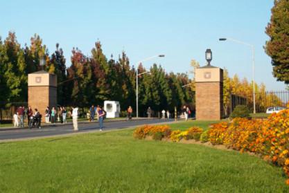Las carreras universitarias más demandadas en la Universidad de Talca