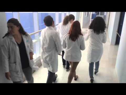 Universidad chilena permite estudiar Ingeniería y Medicina al mismo tiempo